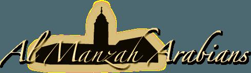 Al Manzah Arabians